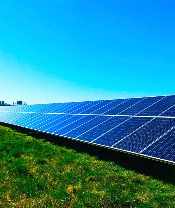 panneaux solaires sur une pelouse verte
